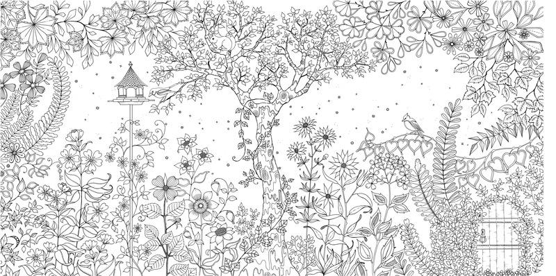 Таинственный сад раскраска минск